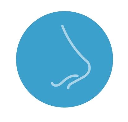 cirugia de septoplastia